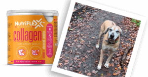 NutriFlex Natural Joint Supplement For Dogs and Cats